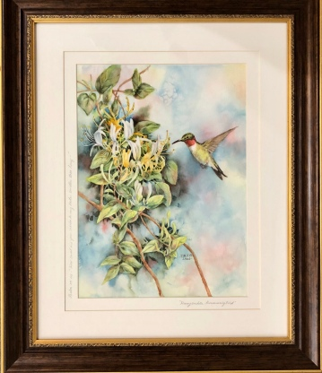 "Anita Seitz ""Honeysuckle Hummingbird"" watercolor"