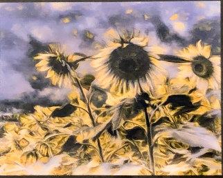 "Norman Lee ""Clemson Sunflowers"" photo"