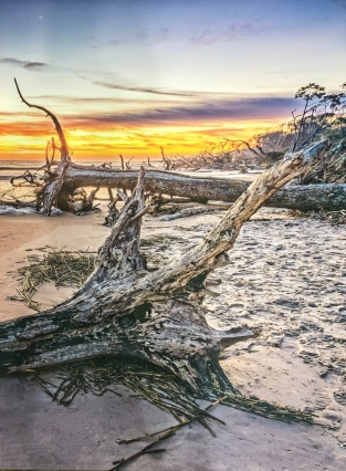 "Russell Carlson ""Driftwood Sunrise"" photo"