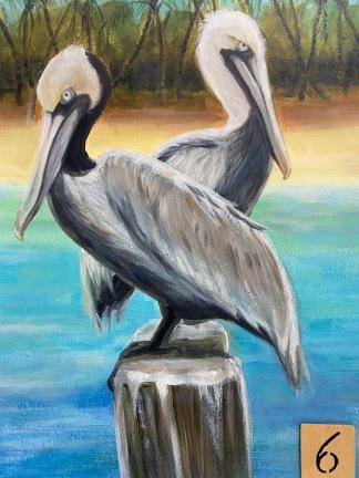 Pelicans (advanced 3hrs)