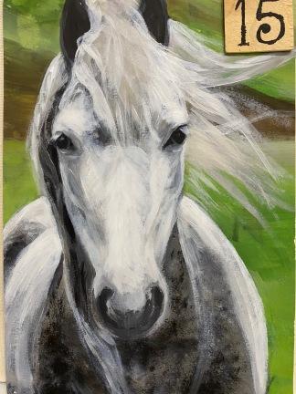 Horse Portrait (2.5hrs)